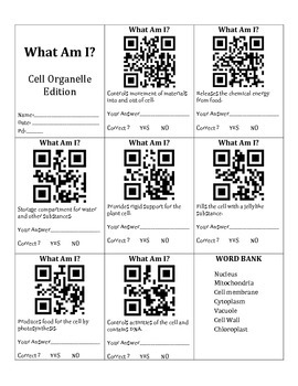 QR Codes & Cell Organelle Vocabulary