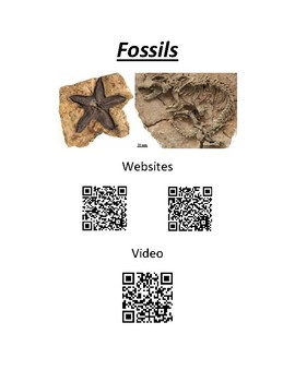 QR Codes for Fossils
