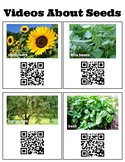 QR Codes for Videos of Seed Time Lapse