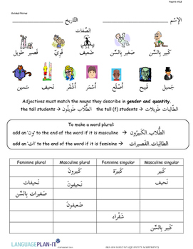 ADJECTIVES, QUANTITY AGREEMENT (ARABIC)
