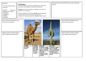 QWC Writing Frame FREE Sample - Adaptation to Desert