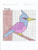 Quadrant 1 Coordinate Graph Mystery Picture, Aracely Woodpecker