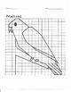 Quadrant 1 Coordinate Graph Mystery Picture, Melissa Bird