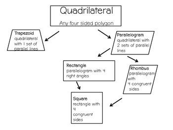 Quadrilateral Graphic Organizer