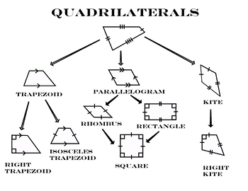 Quadrilateral Tree