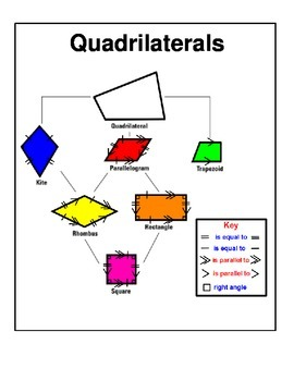 Quadrilaterals Tree Map with Key For Math Notebook