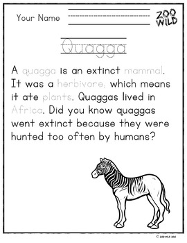 Quagga -- 10 Resources -- Coloring Pages, Reading & Activities