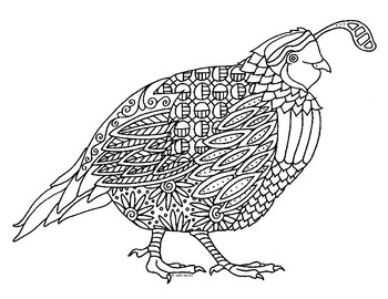 Quail Bird Zentangle Coloring Page