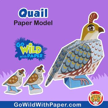 Quail Craft Activity   3D Paper Model