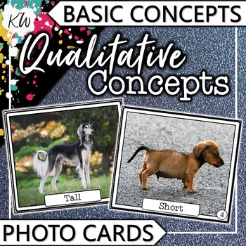 Qualitative Concepts Speech Therapy Flashcards (Basic Concepts Series)