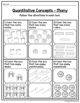 Qualitative and Quantitative Concept Activities for Back to School