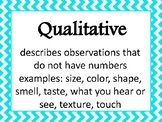 Qualitative and Quantitative Word Wall Posters