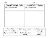 Quanitative vs. Qualitative Data Sort
