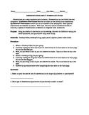 Quantitative and Qualitative Observations Lab