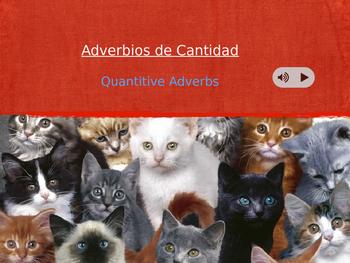 Quantity Adverbs - Adverbios de Cantidad