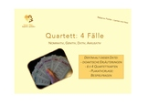 Quartett: 4 Fälle (German grammar)