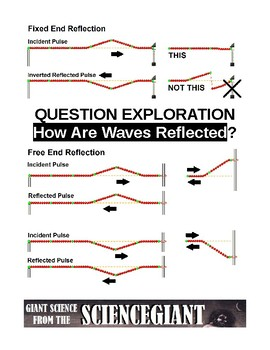 Question Exploration: How Are Waves Reflected?