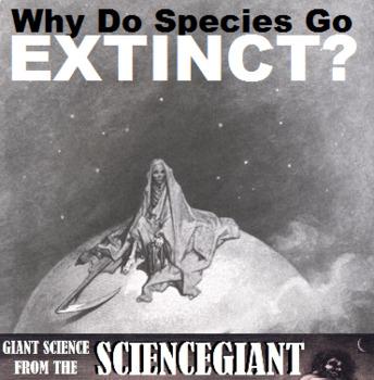 Question Exploration: Why Do Species Go Extinct?