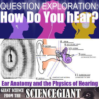 Question Exploration and Concept Compare Frame: The Ear and Hearing