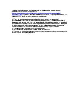 Question Set for AP Bio activity Transcription Factor Cascades & Segmentation