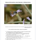 Questions for Documentary Nature's Microworlds: Insect Specials 1: Making Worlds