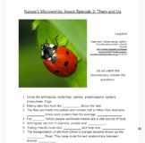 Questions for Documentary Nature's Microworlds: Insect Specials 3: Them and Us