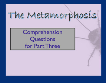 Questions over The Metamorphosis by Franz Kafka Part Three