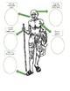 Quick Biography: Gandhi