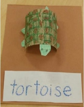 Quick & Easy Tortoise / Turtle Craft