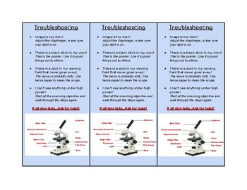 Quick Guide to Using a Microscope