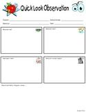 Quick Look Classroom Observation Tool