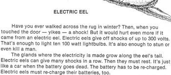 ELECTRIC EELS Worksheet w/ 4 Multiple Choice Questions Rea