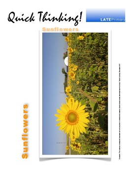 Quick Thinking - Sunflowers