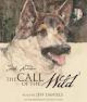 Quiz-Call of The Wild  by Jack London