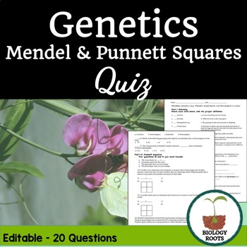 Genetics Quiz: Mendel and Punnett Squares
