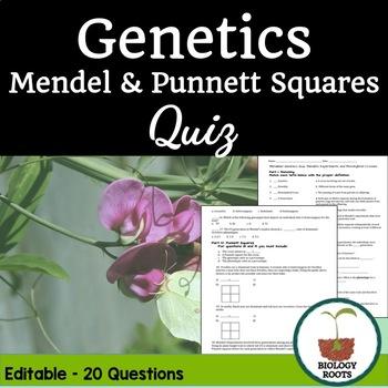 Genetics Quiz: Mendel and Punnett Squares