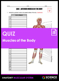 Quiz - Muscles of the Body (Anterior and Posterior)