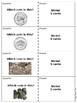 Quiz Quiz Trade Coins