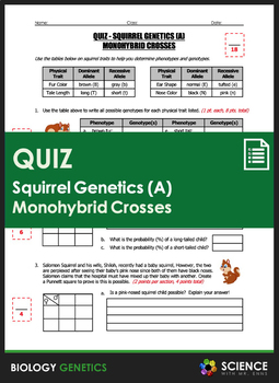 Amoeba Sisters Alleles And Genes Worksheet Answers + My ...