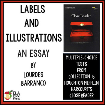 """Quiz for Essay """"Labels and Illusions"""" in 7th Grade Collect"""