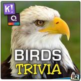 Birds Trivia - Quizizz, QR Codes, and Kahoot!