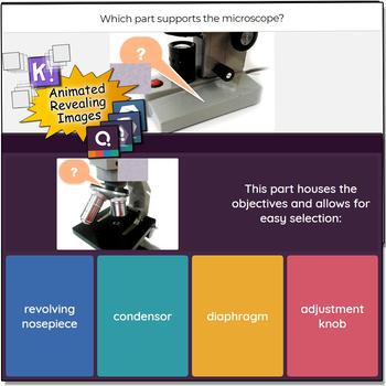 Microscope Trivia - Quizizz, QR Codes, and Kahoot!