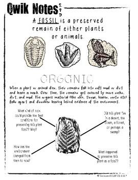 Qwik Notes: Fossils