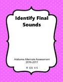 R 4.5 Extended Standards Identify Sounds in CVC Words NEW AAA