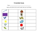 R-Controlled Vowels Word and Picture Cards