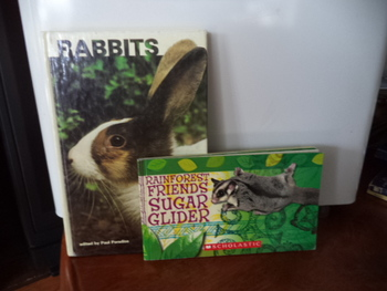 RABBITS,  Rainforest Friends  ISBN0-439-88408-X (set of 2)