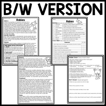 RABIES informational text reading comprehension worksheet, Call of the Wild