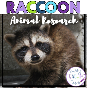 RACCOONS - nonfiction animal research