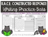 RACE Constructed Response Writing Practice- Bats