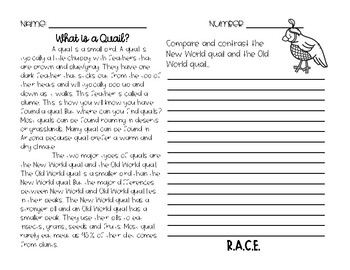 RACE Constructed Response Writing Practice Quails
